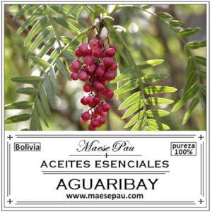 aceite esencial de aguaribay para aromaterapia
