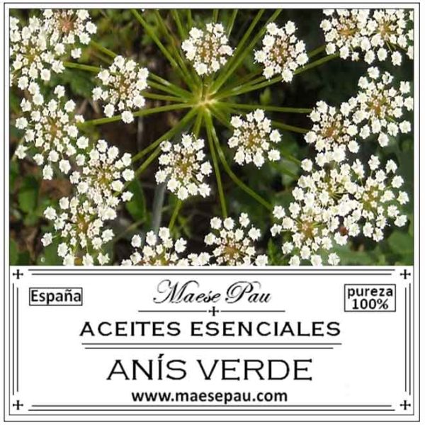 Aceite Esencial de Anís Verde