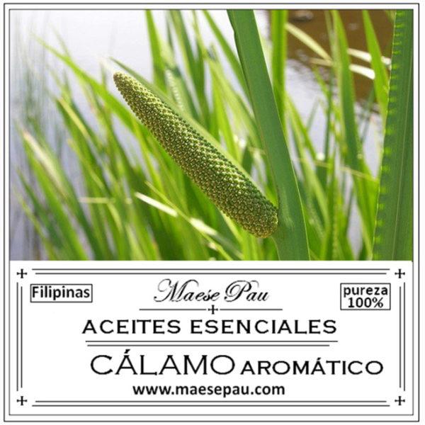 aceite esencial cálamo aromática
