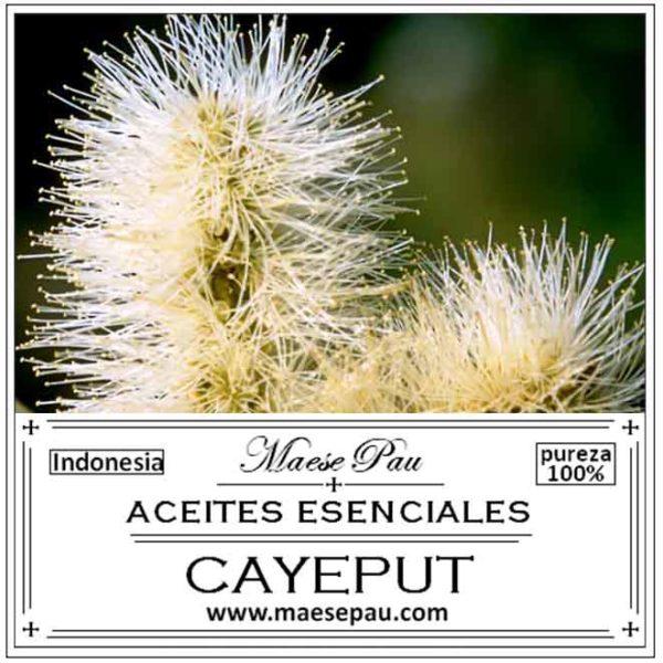Aceite Esencial de Cayeput
