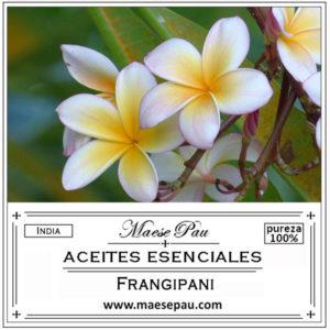aceite esencial de frangipani