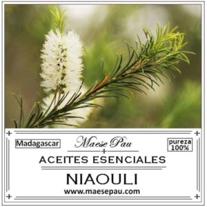 Aceite Esencial de Niaoulí