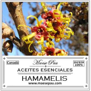 aceite esencial de hamamelis
