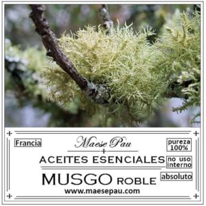 Absoluto de Musgo de Roble