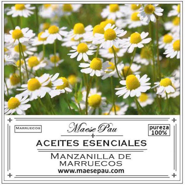 aceite esencial de manzanilla de marruecos