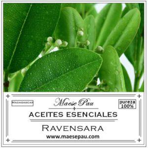 Aceite Esencial de Ravensara