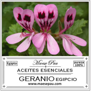 aceite esencial de geranio egipcio aromaterapia