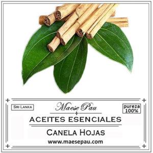 aceite esencial de hojas de canela