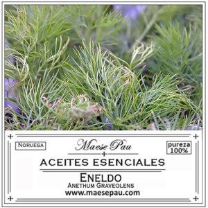 aceite esencial de eneldo hojas