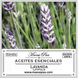 aceite esencial de lavanda latifolia