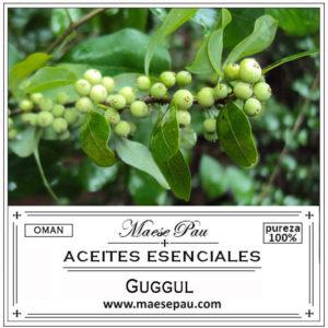 aceite esencial de guggul - mirra de mukul